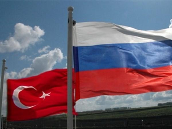 俄土促进贸易关系逐步正常化 - ảnh 1