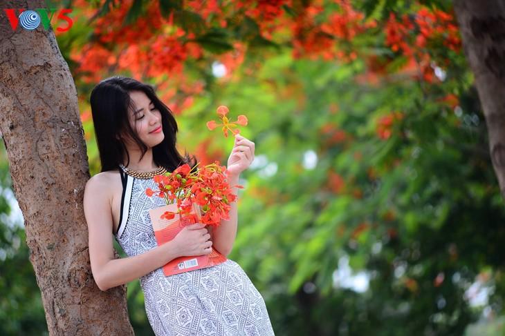 河内缤纷多彩的夏季花卉 - ảnh 8