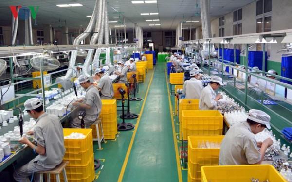 越南力争实现2020年有100万家私营企业有效活动的目标 - ảnh 2