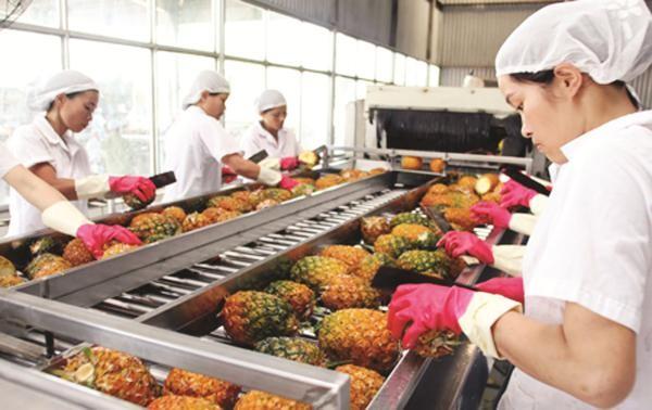 越南水果扩大出口市场 - ảnh 1
