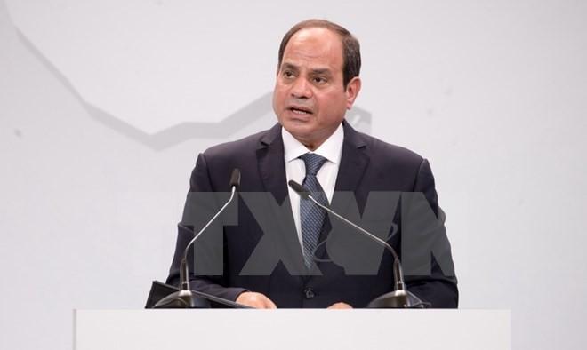 埃及总统塞西开始第四次访问亚洲行程 - ảnh 1