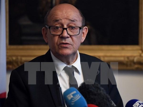 法国支持解决利比亚危机的努力 - ảnh 1
