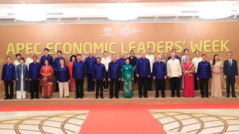 2017 APEC是越南促进经贸合作和巩固国际地位的良机 - ảnh 1