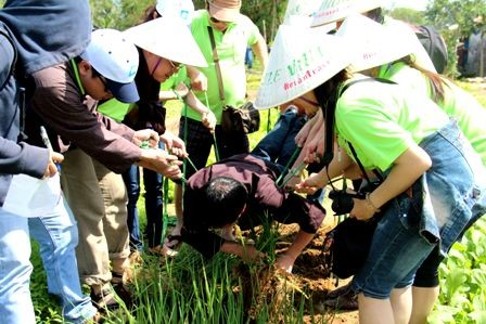 Team buiding, nueva modalidad turística en Vietnam - ảnh 2