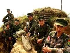 Myanmar: Gobierno y grupos étnicos armados preparan para diálogos políticos - ảnh 1