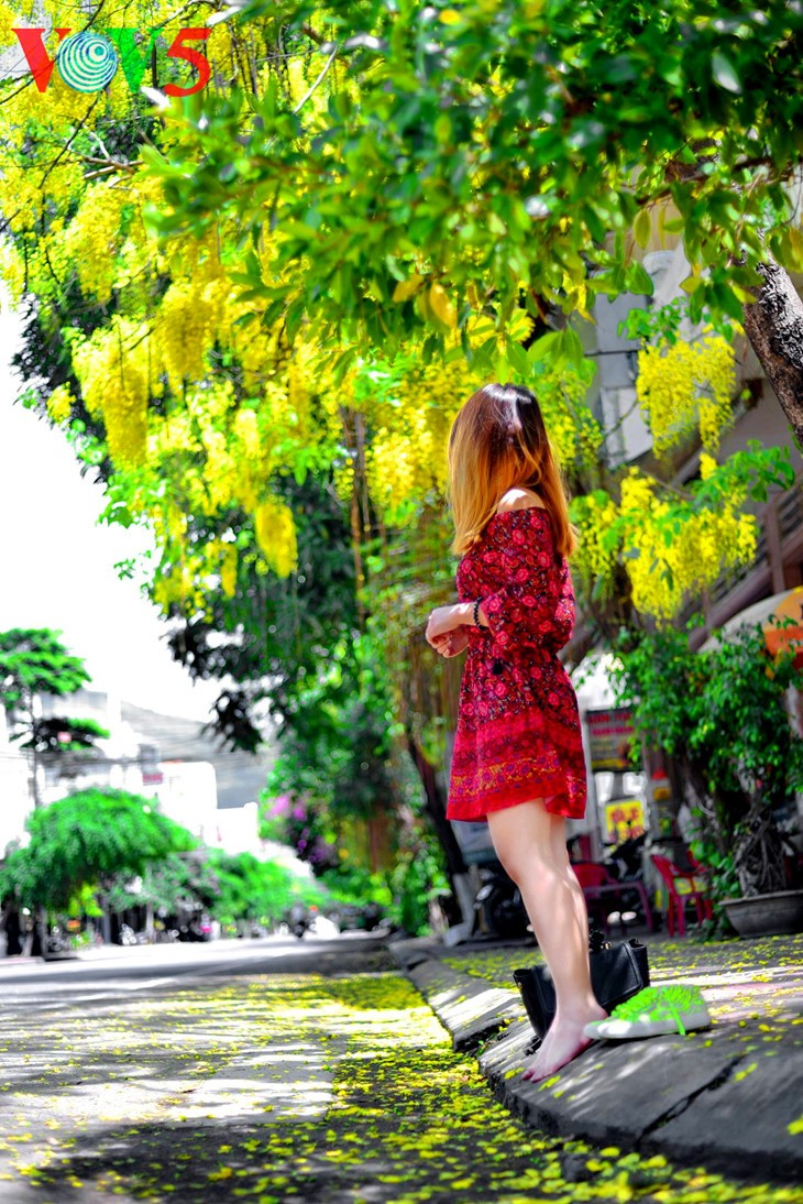 Colorful flowers in Hanoi summer - ảnh 10