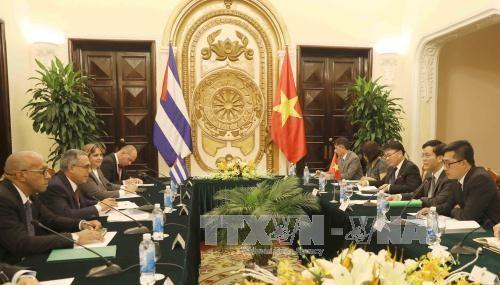 Vietnam, Cuba hold 4th political consultation in Hanoi - ảnh 1