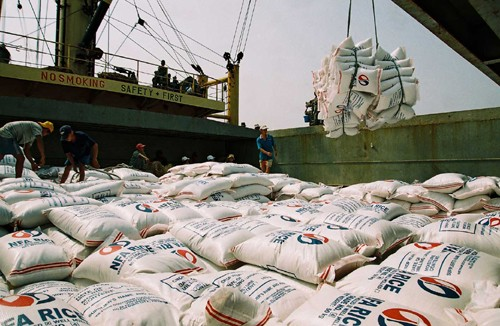 Vietnamese rice export increases - ảnh 1