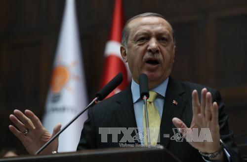 "Turkish President calls US decision on visa suspension ""upsetting"" - ảnh 1"