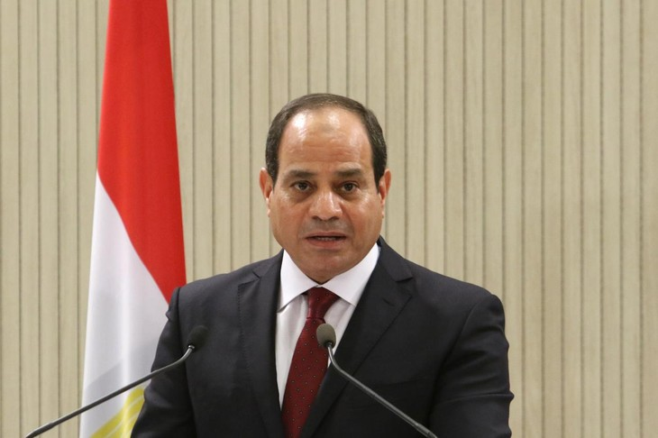 Egypt pledges continued efforts to end Syria crisis  - ảnh 1