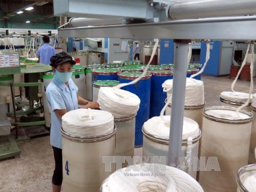 为越南-墨西哥纺织业合作奠定基础 - ảnh 1