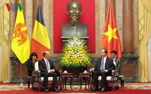 陈大光会见比利时瓦隆-布鲁塞尔联邦首席大臣鲁迪·德莫特 - ảnh 1