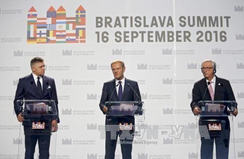 欧盟接受波黑加入申请函 - ảnh 1