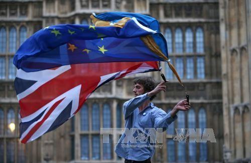 英国和欧盟在脱欧进程中关系紧张 - ảnh 1