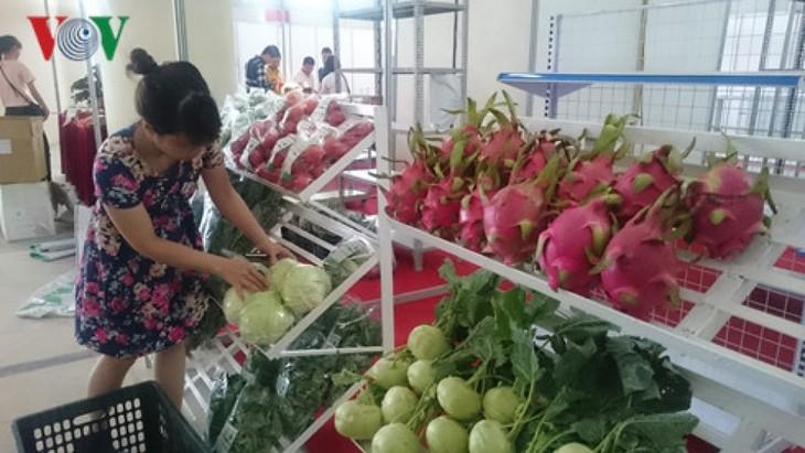 越南蔬果出口额约达10亿美元 - ảnh 1