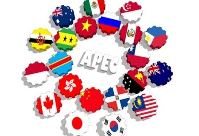 马来西亚媒体:依托亚太经合组织越南将迎来更多增长机会 - ảnh 1