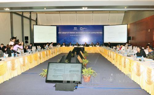 2017 APEC:APEC第二次高官会及系列会议范围内的首场会议举行 - ảnh 1