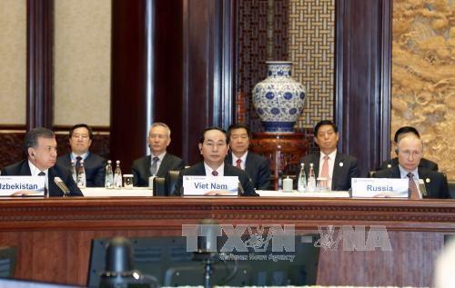 越南扩大国际合作和互联互通   促进和平、合作与发展 - ảnh 1