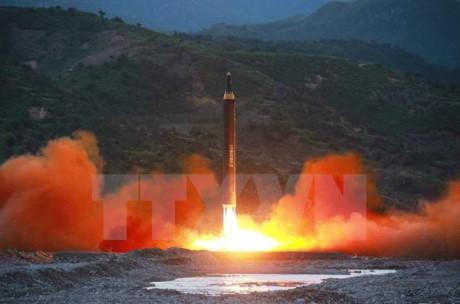 联合国安理会承诺加大对朝制裁力度 - ảnh 1