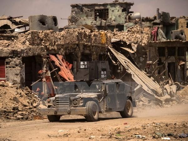"""""""伊斯兰国""""把伊拉克安巴省的4000户家庭作为活盾牌 - ảnh 1"""