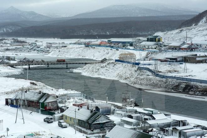 俄日即将就南千岛群岛问题进行经济磋商 - ảnh 1