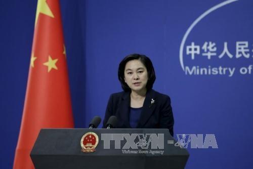 东盟与中国举行落实DOC第22次联合工作组会议 - ảnh 1