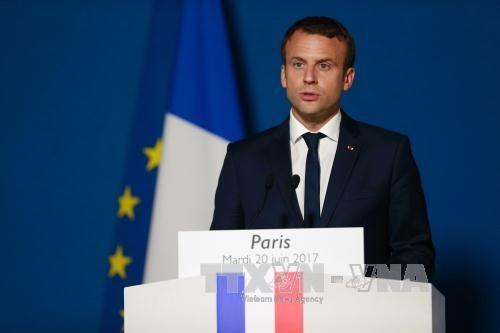 法国总统马克龙:反恐将成为法国外交政策中的头等优先内容 - ảnh 1