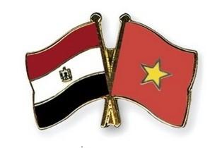 越南-埃及关系新的历史篇章 - ảnh 2