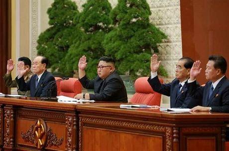 朝鲜全体内阁扩大会议举行 - ảnh 1