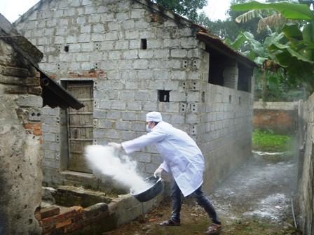 Verstärkte Einführung der Maßnahmen gegen Vogelgrippe - ảnh 1