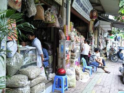 Lan Ong – die Straße der Heilkräuter in Hanoi - ảnh 1
