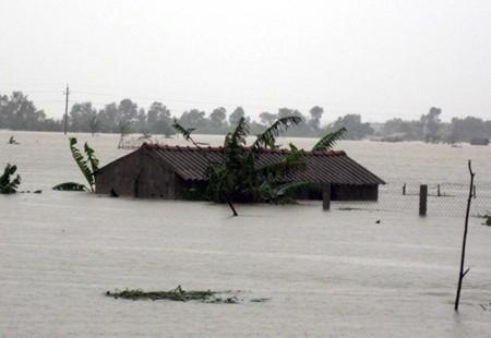 Vietnam feiert den Weltklimatag - ảnh 1
