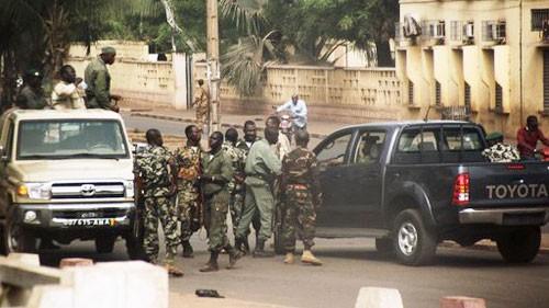 Internationale Verurteilung des Militärputschs in Mali - ảnh 1