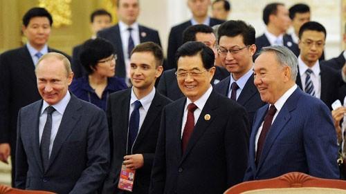 Shanghaier Kooperationsorganisation strebt allseitige Zusammenarbeit an - ảnh 1