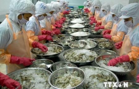 VASEP klagt gegen Antidumpingzölle für Garnelen aus Vietnam - ảnh 1