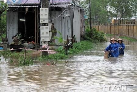 Internationale Geber sagen Vietnam Unterstützung beim Kampf gegen den Klimawandel zu - ảnh 1