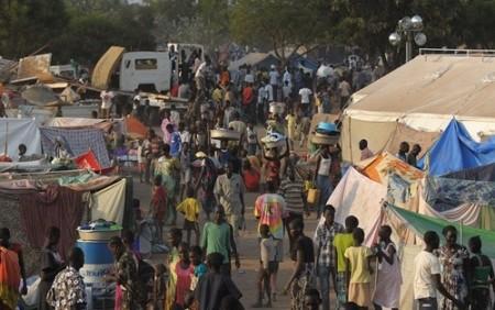 Afrikanische Union will sich aus der Abhängigkeit von Geberländern befreien - ảnh 1