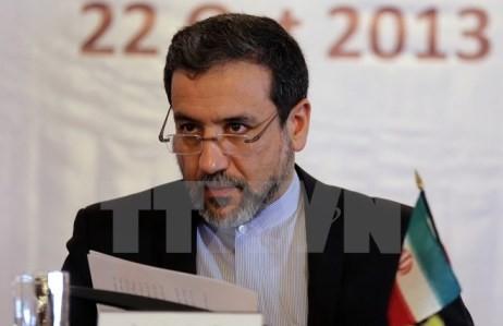 Iran hofft auf eine umfassende Atomvereinbarung in den kommenden Tagen - ảnh 1