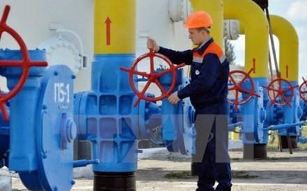 EU, Russland und die Ukraine einigen sich auf Gas-Versorgung für Winter - ảnh 1