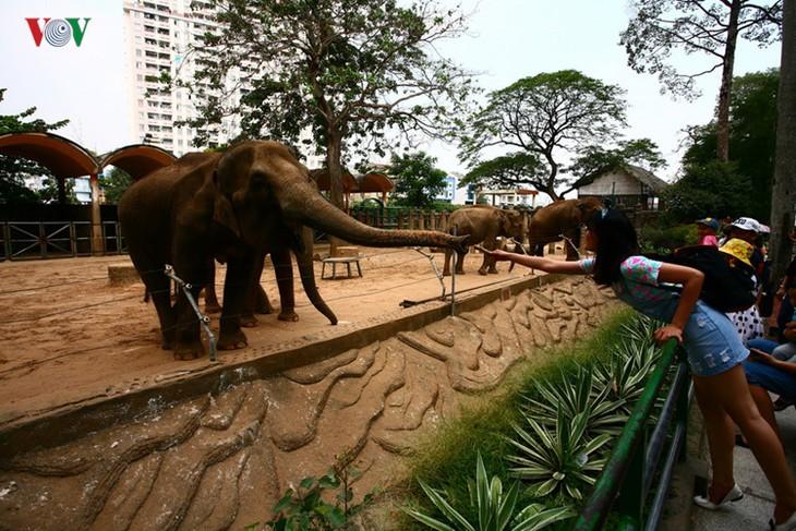 Die beliebten Besuchsziele in Ho Chi Minh Stadt - ảnh 7