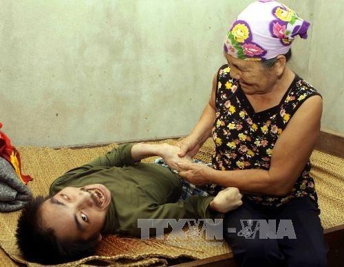 Bewältigung der Folgen des Agent-Orange-Giftstoffes in Vietnam - ảnh 2