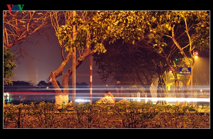 Die Schönheit der Kaiserstadt Hue in der Nacht - ảnh 13