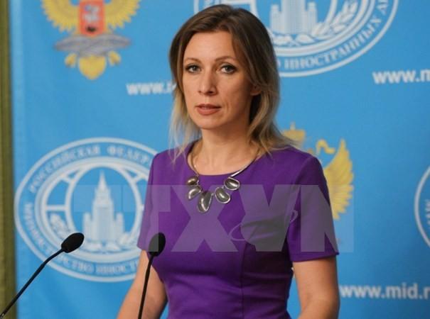 Russland will bilaterale Beziehung mit neuer Regierung in den USA verbessern - ảnh 1