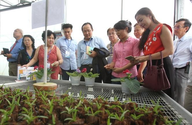Auslandsvietnamesen setzen sich für die Entwicklung der Wissenswirtschaft in Ho Chi Minh Stadt ein - ảnh 1