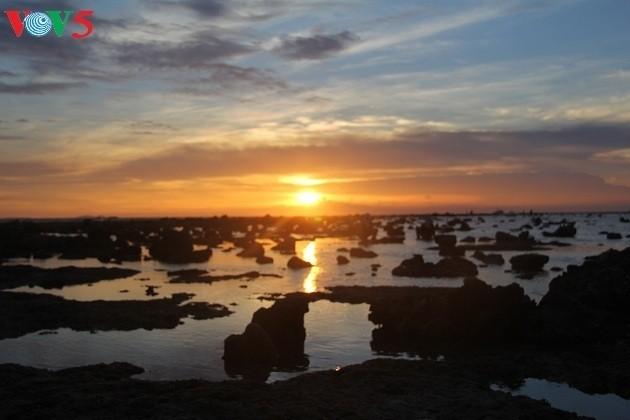 Attraktive touristische Touren auf der Insel Ly Son - ảnh 1
