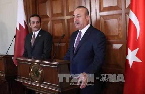 Spannungen am Golf: Katar und die Türkei bemühen sich um eine Lösung - ảnh 1