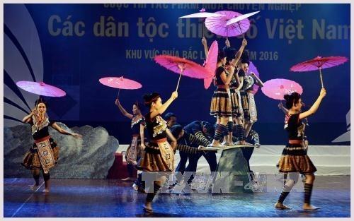 Eröffnung des Wettbewerbs der Tanztalente 2017 - ảnh 1