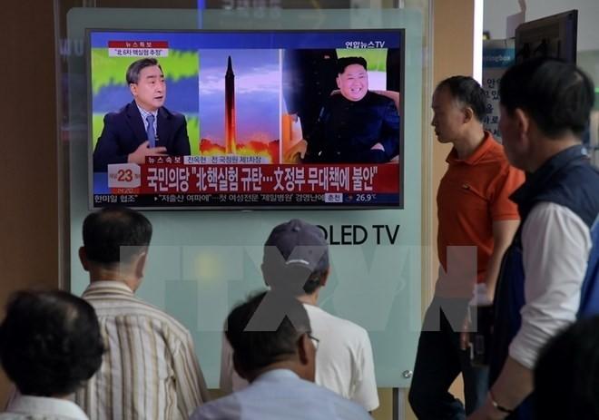 Die internationale Gemeinschaft protestiert gegen den Test der H-Bombe durch Nordkorea - ảnh 1