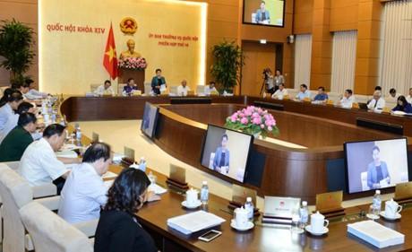 Ständiger Parlamentsausschuss diskutiert den Bericht über die Lösung der Anzeigen im Jahr 2017 - ảnh 1