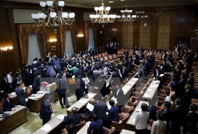 Vorgezogene Wahl in Japan: wichtiger Schachzug des Premierministers Shinzo Abe - ảnh 1
